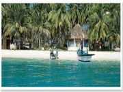 Amazing Holiday Travel With Discount Offer