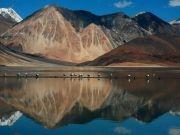 Ultimate Ladakh Premium Tour