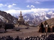 Vacations At Leh