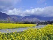 Splendous Kashmir Tour