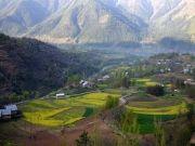 Weekend Offer Kashmir Tour Package 3 Night / 4 Days