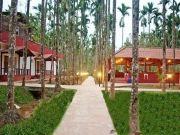 Mysore - Ooty - Coorg Trip