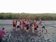 Sunderbans Tour With Wild Beach And Mangrove