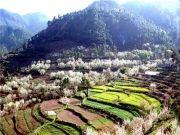 Shimla - Manali - Dharamshala Tour