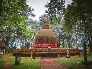 Sri Lanka - Northern Highlights Tours ( 9 Days/ 8 Nights )