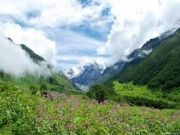 Coorg Tour Package 40 % Discount Offer