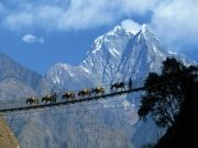 Best Of Gangtok to Pelling Tour ( 6 Days/ 5 Nights )