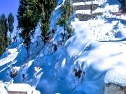 Blissful Shimla Tour ( 4 Days/ 3 Nights )