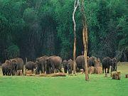 Beautiful South India 4*