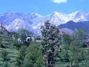Gorgeous Shimla & Manali 2* ( 6 Days/ 5 Nights )
