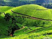 Mysore - Ooty With Kerala Special Holidays Package