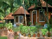 Kerala Ayurveda Panchakarma & Rasayana Package