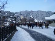 Shimla - Manali Excursion Trip ( 5 Days/ 4 Nights )