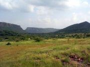 Wildlife Rajasthan Tour  ( 7 Days/ 6 Nights )