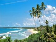 Miracle Sri Lanka With 5 Star Hotel