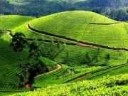 Kerala 8 Nights /9 Days Package ( 9 Days/ 8 Nights )