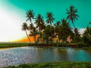 Kerala Holiday Package With House Boat