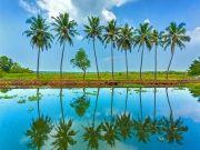 Love In Kerala With Luxury Honeymoon Holiday Package