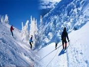 Amazing Himachal 8 Nights/9 Days Package