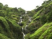 Coorg Tour 1n2d Package