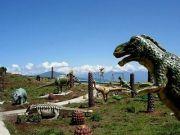 Darjeeling - Gangtok Tour ( 6 Days/ 5 Nights )