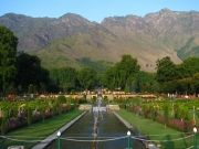 Magical Kashmir  (4 Nights / 5 Days)