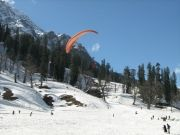 Honeymoon Tour Package For Shimla (  )