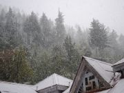 Blissfull Shimla (luxury) Tour