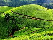 Delight Kerala Package