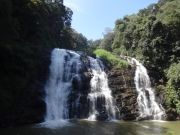 Coorg Bus Package 1 Night & 2 Days