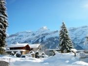 Amazing Manali Package  (  4 Nights )