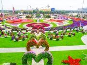 Luxury Winter in Dubai (  )