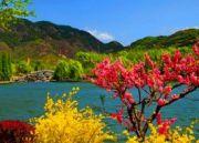 Natural Tour Of Kashmir (  )