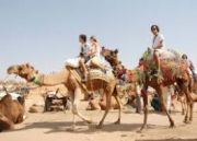 Pushkar Fair Tour (  6 Nights )