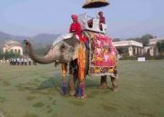 Real Rajasthan Experience Tour