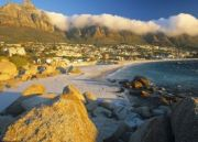 South African Rendezvous Tour