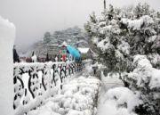 Special Manali - Shimla Tour