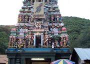 Arupadai Veedu (Murugan Temple) Devotional Tour package