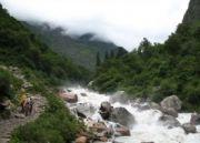 Assam Tea Estate Wildlife Tour