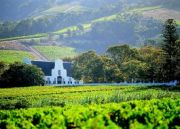 The Beauty of Cape and Winelands ( 5 Days / 4 Nights )