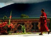 The Ultimate Sikkim Tour ( 15 Days/ 14 Nights )