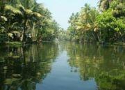 Backwater & Beaches Of Kerala 5 Nights 6 Days ( 6 Days/ 5 Nights )