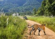 Uttaranchal Special - Corbett And Nainital