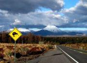 07 Nights tours in Newzealand ( 8 Days/ 7 Nights )