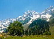 Captivating Kashmir Tour (  5 Nights )