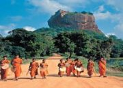7 Days Tour In Sri Lanka