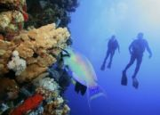 Exotic Andaman Package (  6 Nights )
