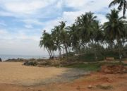 God's Own Country Kerala Tour (  14 Nights )