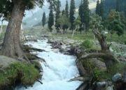 Abode Of Natural Beauty Kashmir Tour
