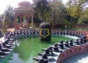Adventure Unlimited Uttarakhand Tour